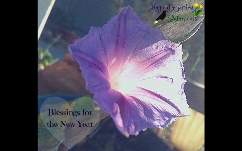 Blessings for the New Year