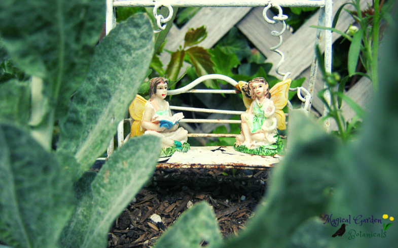 Stories from the Magical Garden in Summer